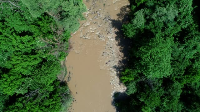 aerial view of a riverbed after the rain, with green forests and vast nature skyline, panoramic point of view. - 4k resolution stock videos & royalty-free footage