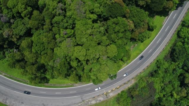 luftaufnahme von einer straße in einer gesamtstruktur - tropischer regenwald stock-videos und b-roll-filmmaterial