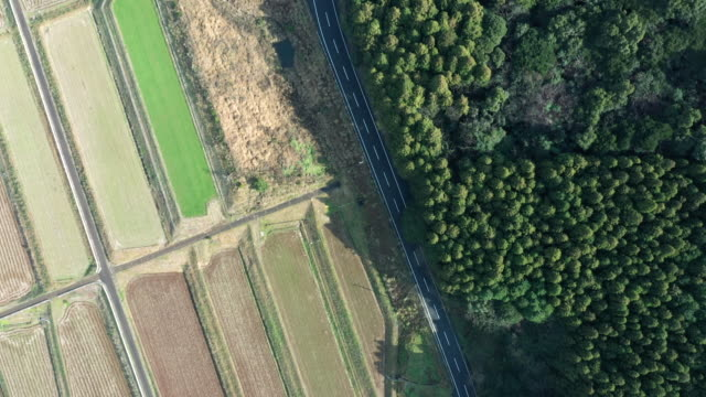 aerial view of a road running between a forest and paddy field - 農村の風景点の映像素材/bロール