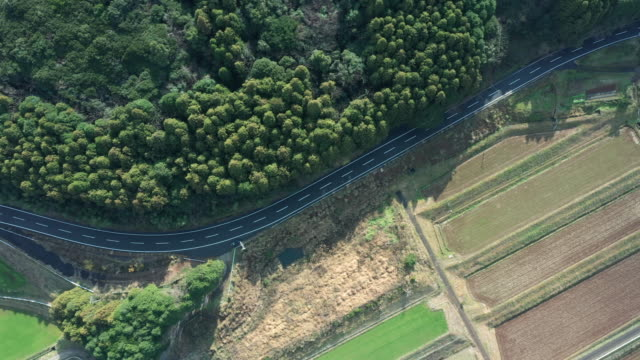 aerial view of a road running between a forest and paddy field - 場所点の映像素材/bロール
