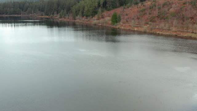vídeos y material grabado en eventos de stock de vista aérea de un lago escocés junto a un bosque en un aburrido día de primavera nublado - johnfscott