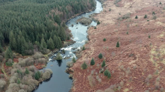 vídeos y material grabado en eventos de stock de vista aérea de un río escocés junto a un bosque en un aburrido día de primavera nublado - johnfscott