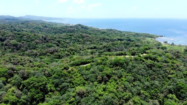 Aerial view of a seaside junge in Oakridge Honduras
