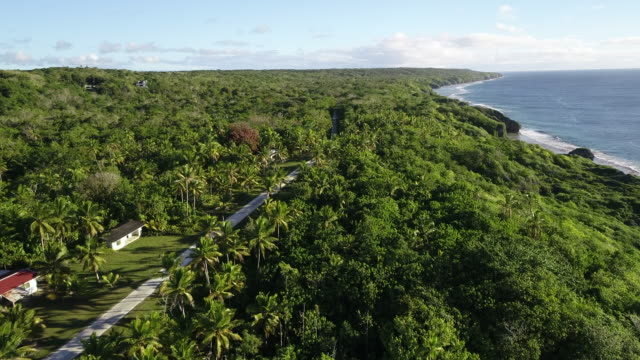 stockvideo's en b-roll-footage met aerial view of a settlement on niue - samoa