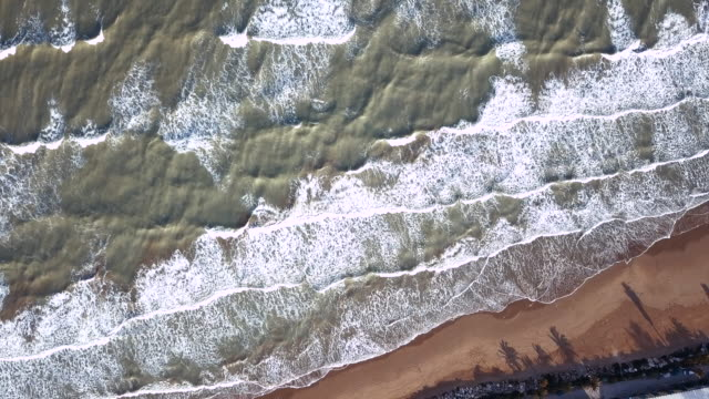 Aerial view of a shore