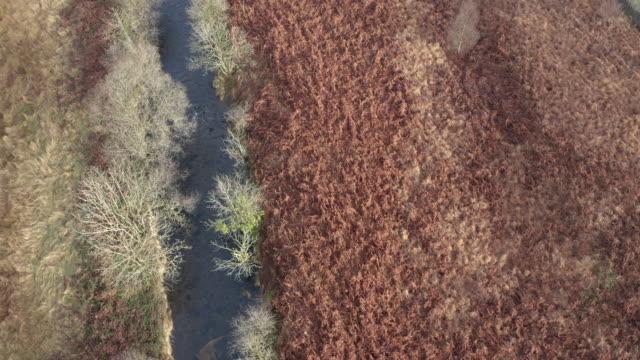 vídeos y material grabado en eventos de stock de vista aérea de un pequeño río en una remota zona rural de dumfries y galloway - material de construcción