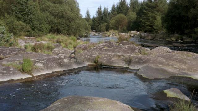 vídeos y material grabado en eventos de stock de vista aérea de un pequeño río escocés en un bosque - johnfscott