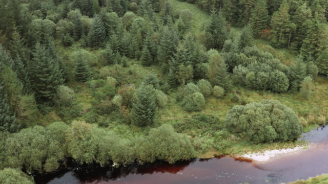aerial view of a small scottish river - johnfscott stock videos and b-roll footage