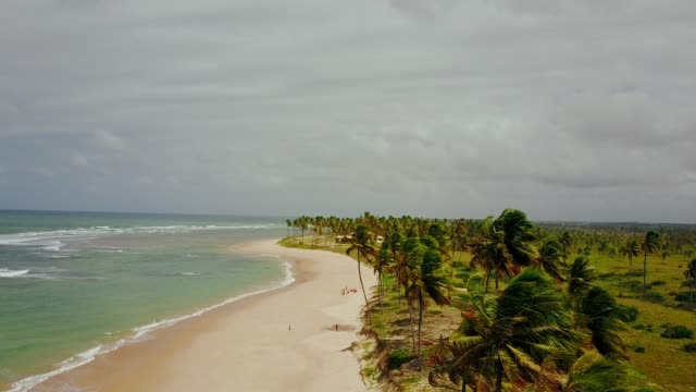 aerial view of a stormy beach in brazil - bahia state stock videos and b-roll footage