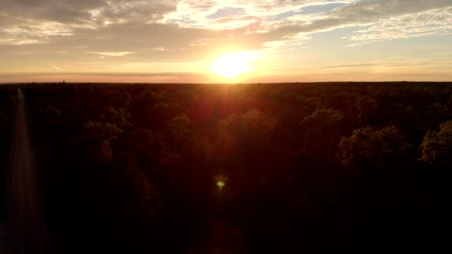 aerial view of a sunset over woods in lewiston michigan - michigan stock videos & royalty-free footage