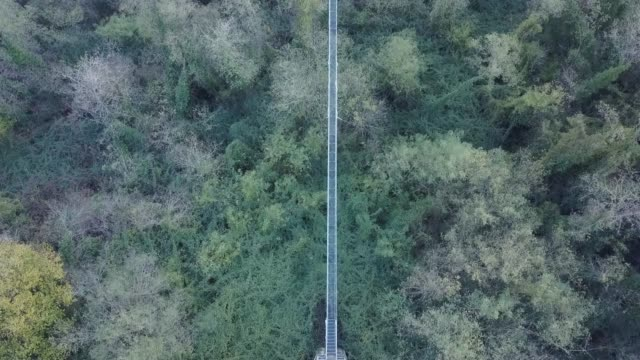 aerial view of a suspension bridge over a creek and a forest - suspension bridge stock videos & royalty-free footage