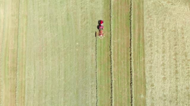 luftaufnahme eines traktors, der ein feld erntet - cereal plant stock-videos und b-roll-filmmaterial