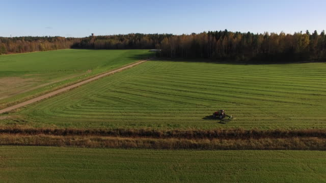stockvideo's en b-roll-footage met aerial view of a tractor - oogsten