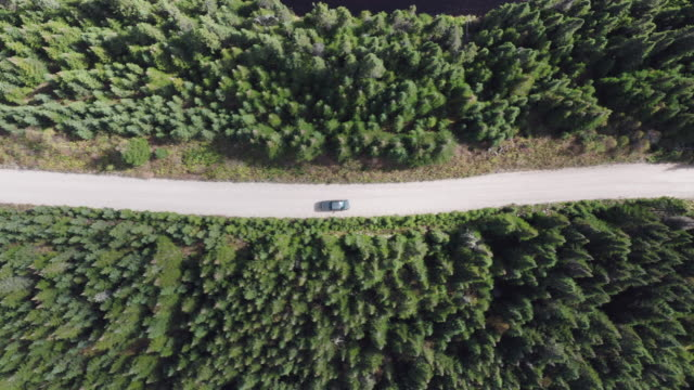 aerial view of a truck on dirt road in forest - lost stock videos & royalty-free footage