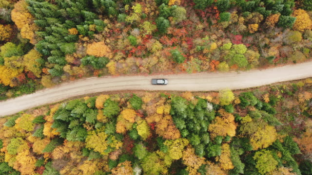 aerial view of a vehicle on road leading trough beautiful colorful autumn forest in sunny fall - calendar date stock videos & royalty-free footage