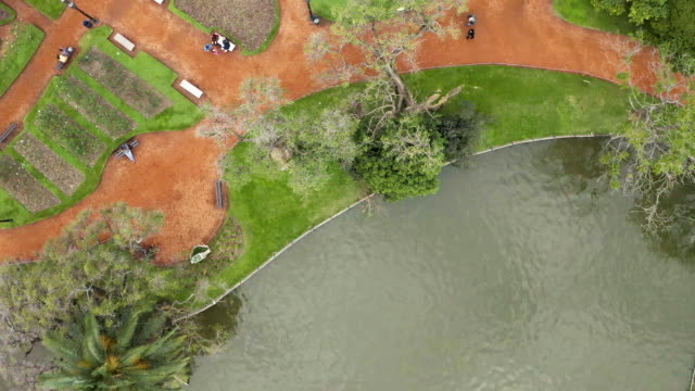 aerial view of a walking and leisure park in buenos aires city, argentina - buenos aires stock-videos und b-roll-filmmaterial