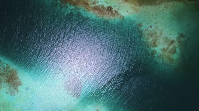 aerial view of a white sand cays and islands in the caribbean sea with turquoise waters - moving down stock videos & royalty-free footage