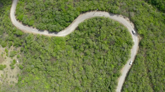 Aerial View of a Winding Road in Cactus Forest, Curacao