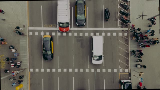 aerial view of a zebra crossing - zebra crossing stock videos & royalty-free footage