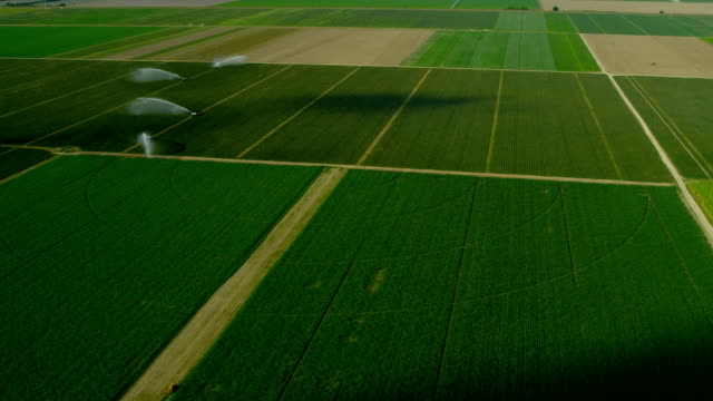 Aerial view of agricultural farming land Southern Florida