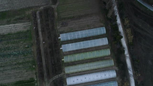 aerial view of agricultural fields - 鳥の鉤爪点の映像素材/bロール