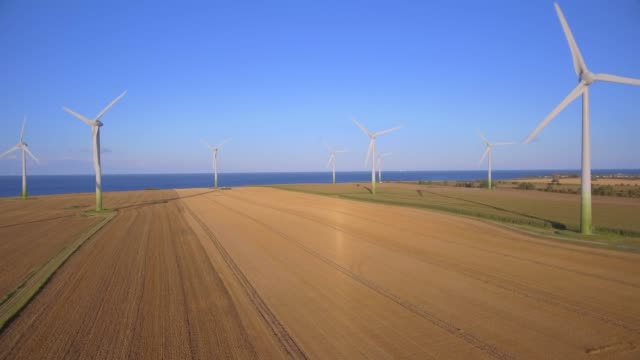 aerial view of agriculture cornfield and wind turbine on the island fehmarn - schleswig-holstein , germany - schleswig holstein stock videos & royalty-free footage