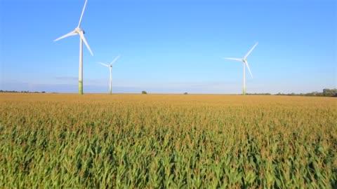 島フェーマルン - ドイツ、シュレースヴィヒ = ホルシュタイン州の農業畑と風車の空中写真 - 風力発電点の映像素材/bロール