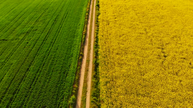 vídeos y material grabado en eventos de stock de aerial view of agriculture field partition by straight path with green and yellow colors in spain. - acera