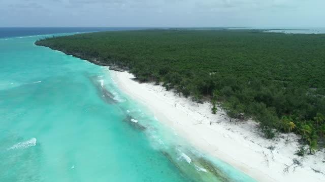 vídeos y material grabado en eventos de stock de aerial view of aldabra atoll, seychelles - cnidario