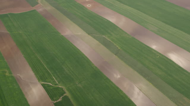 aerial view of alternating green and brown fields - 2k resolution stock videos and b-roll footage
