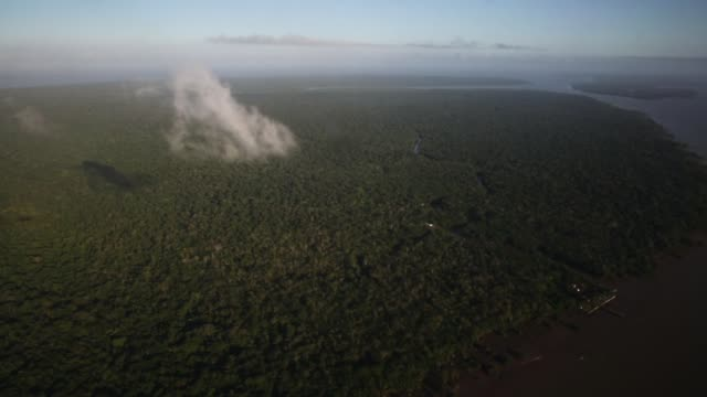 vídeos de stock, filmes e b-roll de aerial view of amazon basin on november 25 2014 in para state brazil - amazonas state brazil