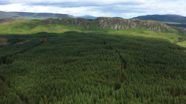 aerial view of an area of forest in rural south west scotland - galloway scotland stock videos & royalty-free footage