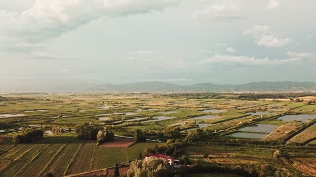 aerial view of an italian countryside with flooded countryside - wildlife reserve stock videos & royalty-free footage