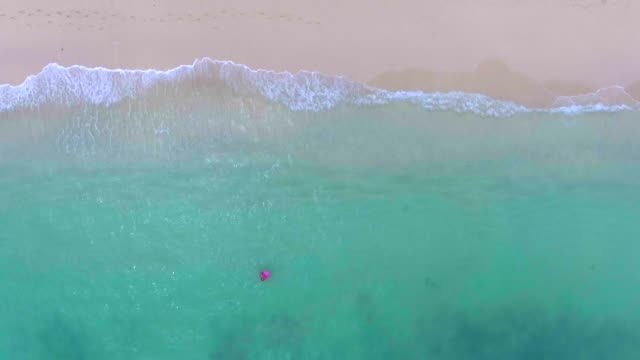 aerial view of an woman caching wave - floating on water stock videos & royalty-free footage