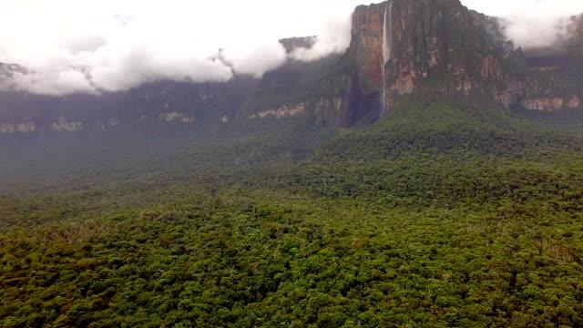 vídeos y material grabado en eventos de stock de vista aérea de ángel cae la cascada más alta del mundo - venezuela