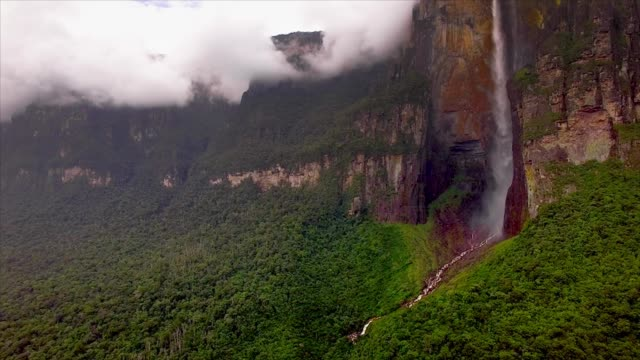 aerial view of angel falls in the canaima national park. venezuela - falling water stock videos & royalty-free footage