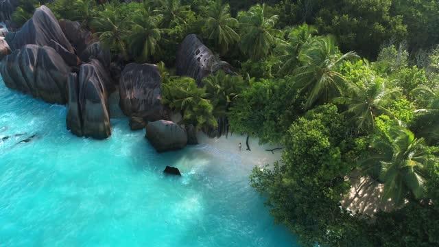 vídeos de stock e filmes b-roll de aerial view of anse source d'argent, la dique seychelles - drone 4k - árvore tropical