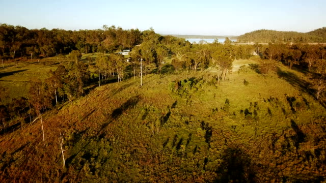 aerial view of australian savannah - horizontal stock videos & royalty-free footage