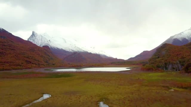 aerial view of autumn foliage against snowy peaks - provinz chubut stock-videos und b-roll-filmmaterial