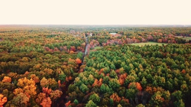 stockvideo's en b-roll-footage met luchtfoto van de herfst boom in de schemering in nieuw-engeland - new hampshire