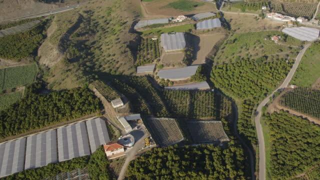 vídeos y material grabado en eventos de stock de aerial view of avocado and citrus plantations, malaga, andalusia, spain - aguacate