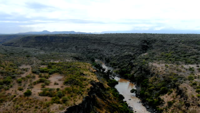 aerial view of awash river / ethiopia - ethiopia stock videos & royalty-free footage