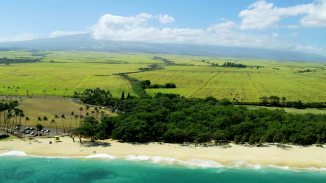 aerial view of baldwin beach park maui usa - polynesian ethnicity stock videos & royalty-free footage