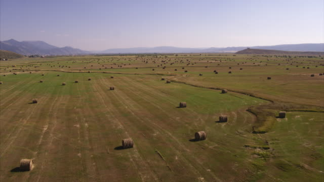 Aerial view of bales of rolled up hay in fields near mountains / Afton, Wyoming, United States