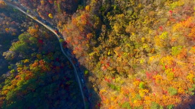 Aerial view of Bangtaesan Mountain (Famous mountain in Korea) in Autumn