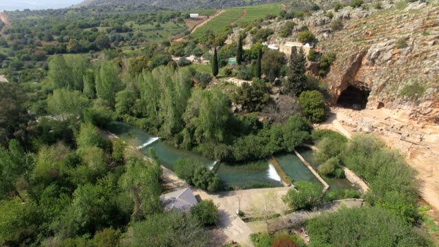 aerial view of banias nature reserve at spring time with mediterranean vegetation / hermon, israel - middle east stock videos & royalty-free footage