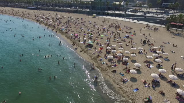 aerial view of barceloneta beach - barcelona stock-videos und b-roll-filmmaterial
