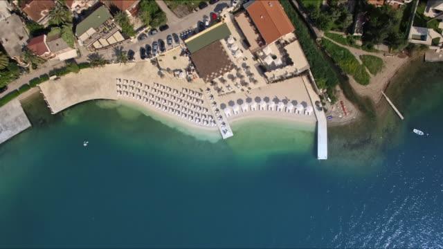 flygfoto över stranden och havet - tropiskt träd bildbanksvideor och videomaterial från bakom kulisserna