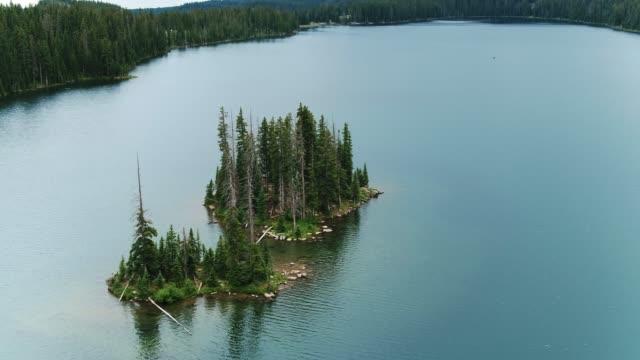 vídeos de stock e filmes b-roll de aerial view of beautiful alpine lake in aspen - choupo tremedor