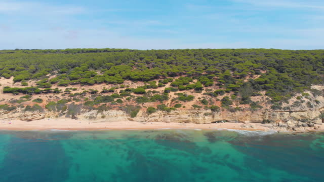 aerial view of beautiful and desert beach with nobody - cádiz stock videos and b-roll footage